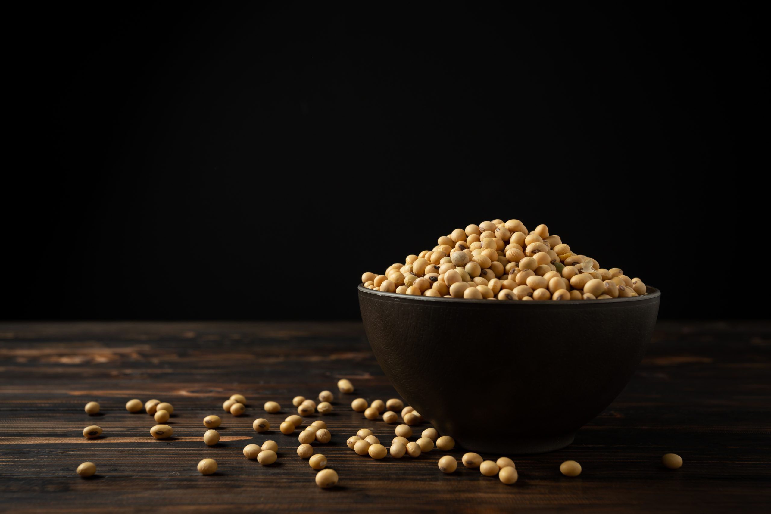 Soy fiber protein